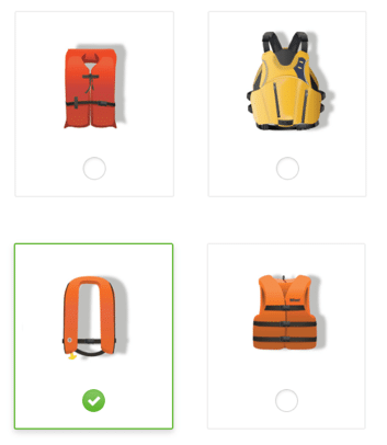 Four boxes showing different kinds of lifejackets, one of which has been highlighted as an answer to a question